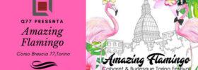 Amazing Flamingo Festival al Q77 di Torino