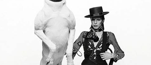 Terry O'Neill - Iconic Images al PH Neutro Gallery a Siena